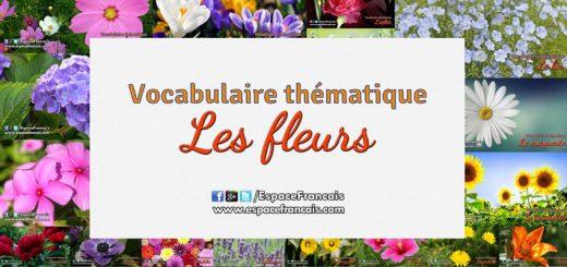 Les fleurs - Vocabulaire français thématique