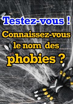 Exercice : Connaissez-vous le nom des phobies grâce à leur définition ?